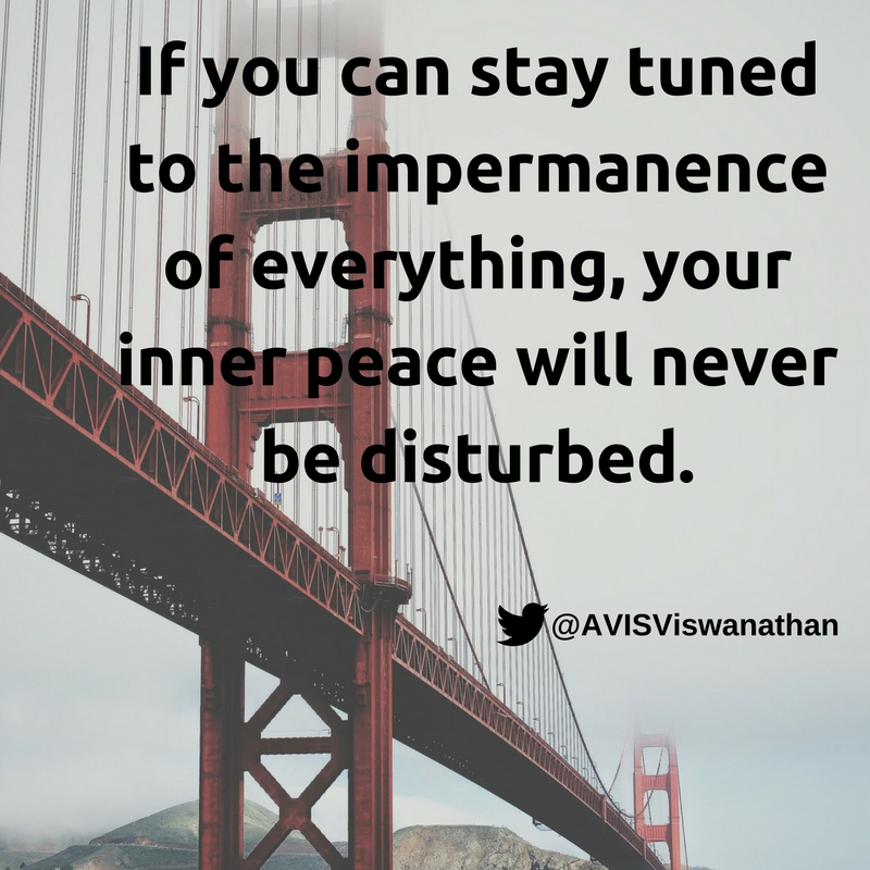 avis-viswanathan-stay-tuned-to-the-impermanence-of-everything