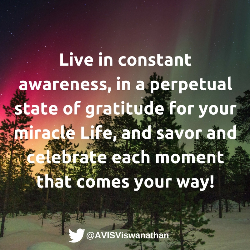 AVIS-Viswanathan-Savor-and-celebrate-each-moment