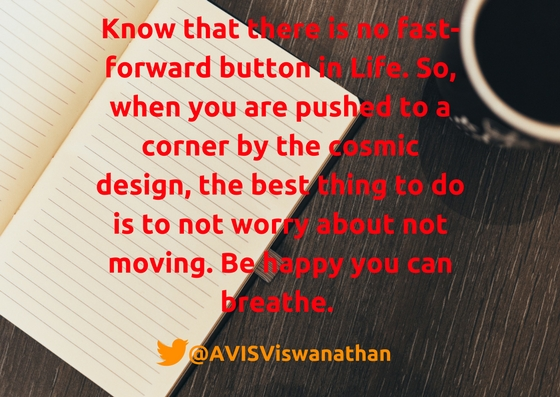 AVIS-Viswanathan-There-is-no-fast-forward-button-in-Life
