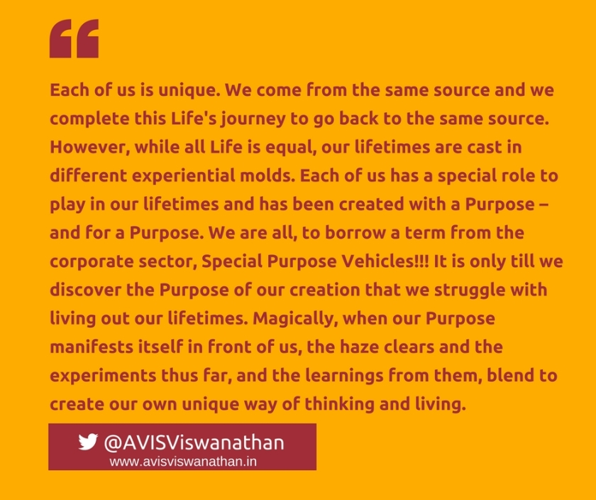AVIS-Viswanathan-We-are-all-Special-Purpose-Vehicles