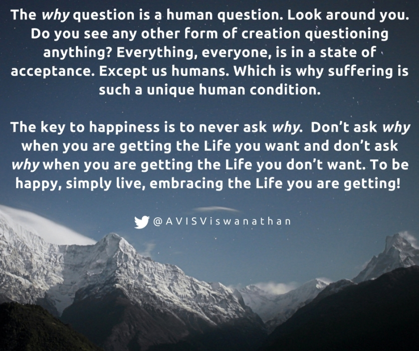 AVIS-Viswanathan-The-Why-Question-And-Happiness